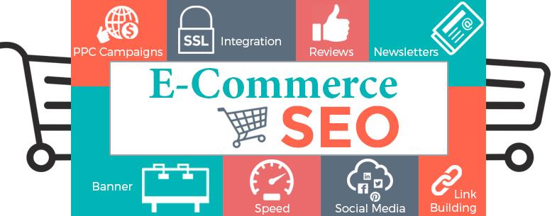 ECommerce SEO Expert Delhi